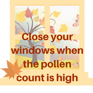 Tips for Respiratory Care During Allergy Seasons