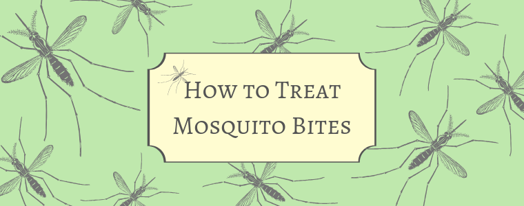 How to treat mosquito bites with Calmoseptine
